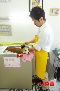 yuki2016050101