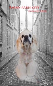 パリ小椋メロディー